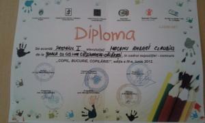 dipl12